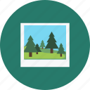 polaroid, forest, photo, camping, woods, picture, landscape icon