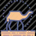 camel, desert, ride, travel