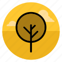 forest, garden, nature, outdoor, park, plant, tree icon