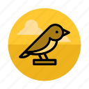 animal, bird, forest, nature, scarecrow, tweet, wild icon