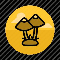 food, forest, fungus, gathering, mushroom, mushrooms, outdoors icon