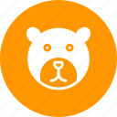 bear, bears, brown, head, polar, tree, wildlife icon
