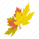 canada, canadian, fall, isometric, leaf, nature, vector maple icon