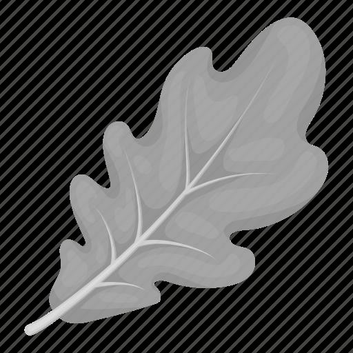 eco, forest, leaf, nature, oak, plant, tree icon