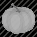 farm, food, garden, product, pumpkin, vegetable icon