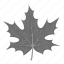 ecology, forest, leaf, maple, nature, plant, tree icon