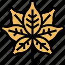 cannabis, leaves, plant, marijuana, herb