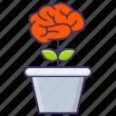 awareness, growth, idea, pot, thinking