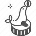 animal, carnival, circus, entertainment, seal