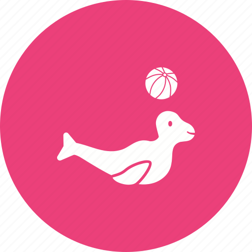 Art, circus, dolphin, performance, sea dog, show icon - Download on Iconfinder