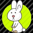 animal, animals, rabbit, radish icon