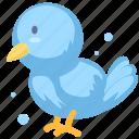animal, bird, cartoon animal, cartoon bird icon