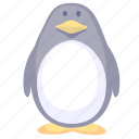 animal, cartoon penguin, emperor penguin, penguin icon