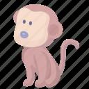 cartoon monkey, chimp, chimpanzee, monkey icon