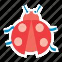 bug, garden, insect, ladybird, ladybug, nature, spring icon