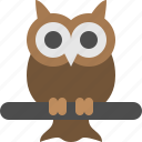 animal, bird, fowl, halloween, night, owl, wisdom icon