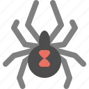 animal, cobweb, halloween, insect, spider icon