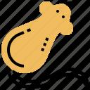 animal, experiment, lab, rat, testing