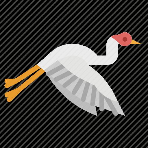 animal, bird, feather, fly, heron icon