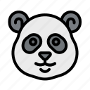 animal, bear, kingdom, panda, wildlife