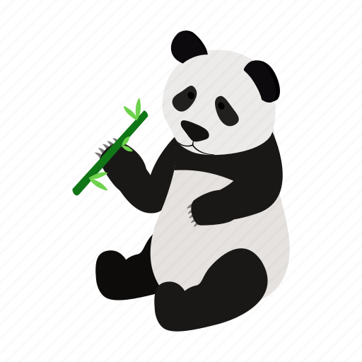 animal, asia, isometic, nature, panda, wild, wildlife icon