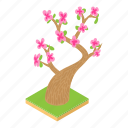 cartoon, cherry, flower, japanese, nature, sakura, tree icon
