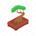 bonsai, cartoon, green, nature, plant, pot, tree icon