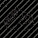 box, chinese, dumpling, entry, food, steamed, wonton