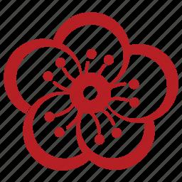 bloom, china, chinese, chinese plum, flower, flowers, plum icon