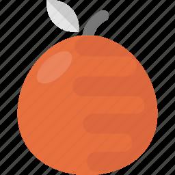 food, fruit, mandarin, orange, tangerine icon