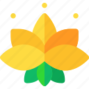 flower, lotus, magical icon