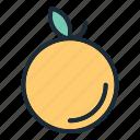oranges, fruit, juice, fresh, healthy, orange, organic icon
