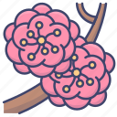 chinese, flower, new, year icon