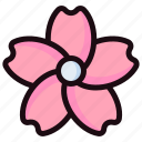 sakura, flower, blossom, floral, pink, blooming