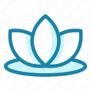 floral, flower, lotus, plant, blossom