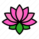china, flora, flower, lotus, pink, spa icon
