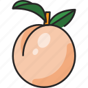 peach, fruit, food, healthy, fresh, sweet, delicious
