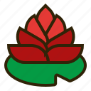 chinese new year, flower, lotus, lunar, oriental, plant, spring festival icon