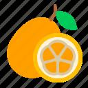 chinese new year, kumquat fruits, lunar, mandarin, orange, oriental, spring festival