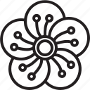 bloom, chinese new year, flower, lunar, oriental, plum blossom, spring festival icon