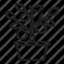 chinese new year, fruits, kumquat tree, lunar, orange, oriental, spring festival icon