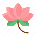 chinese, cny, flower, lotus, new year icon