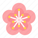 chinese, cny, flower, new year, plum blossom icon