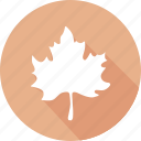 christmas, holiday, maple, vacation, winter icon