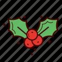 berry, christmas, decoration, holly, mistletoe, star, winter