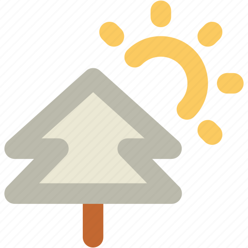 Bright day, fir tree, forest, park, pine tree, sun, sunny day icon - Download on Iconfinder