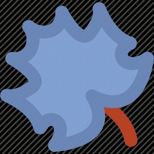autumn leaf, garden, leaf, tree fall, tree leaf, yard icon