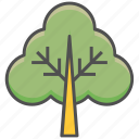 fir trees, forest, jungle, larch trees, trees icon