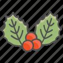 christmas, holly, mistletoe icon