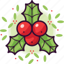 plant, leaf, xmas, nature, christmas, holly, berry